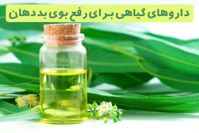 داروهای گیاهی برای از رفع بوی بد دهان