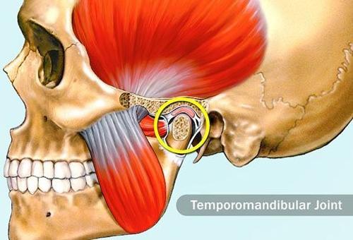 مفصل گیجگاهی فک  TMJ
